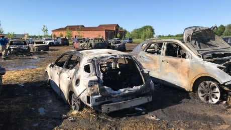 Fast-moving grass fire burns 34 vehicles at Niagara Lavender Festival