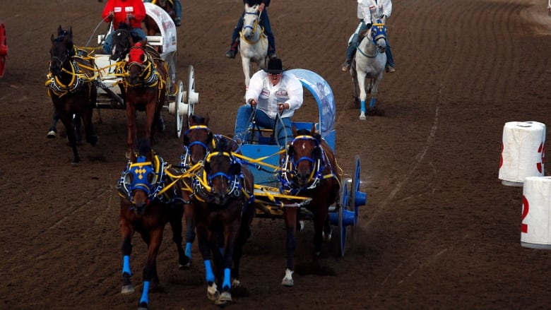 Chuckwagon Racing 101 Why It S Ok To Ask What A Wheeler