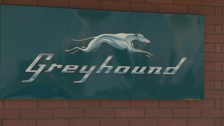Greyhound Whitecourt