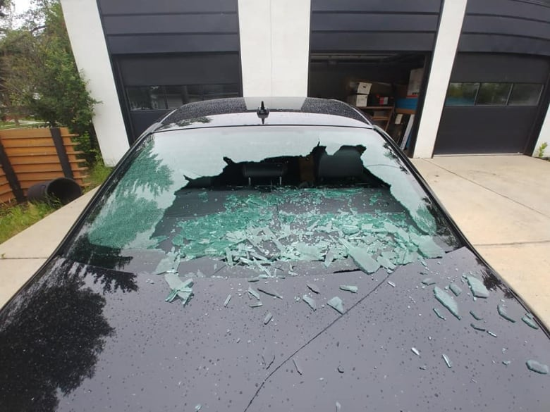 Vandals Armed With Bricks Are Smashing Up Edmonton