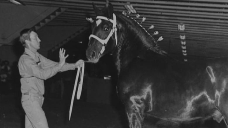 An Undated Photo Of Bruce Roy Shows Him With A Horse He S