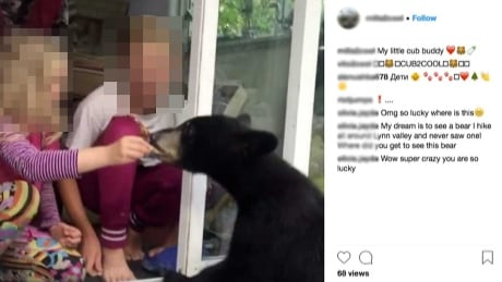 videos show girls handfeeding bears at vancouver area home