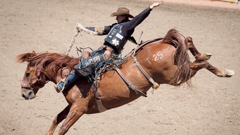 Saddle Bronc Rider Zeke Thurston Is Looking To Become The