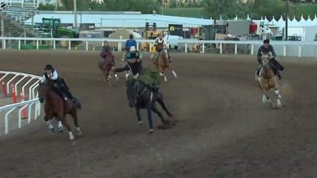 Sidesaddle racing: Fast women and pretty horses