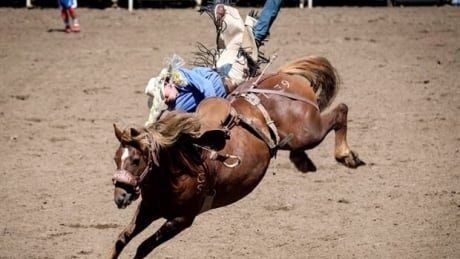 Calgary Stampede Rodeo Roundup: Day 7