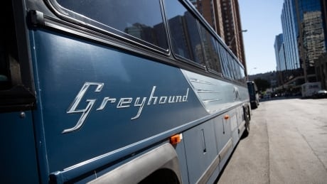 Greyhound buses