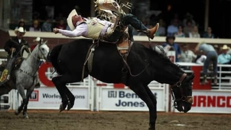 Calgary Stampede Rodeo Roundup: Day 8