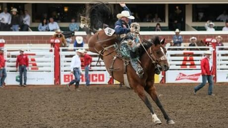 Calgary Stampede Rodeo: Wild Card Saturday