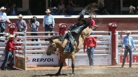 Calgary Stampede Rodeo Roundup: Day 9