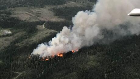 Wildfire evacuation alert issued for rural area near Vanderhoof, B.C.