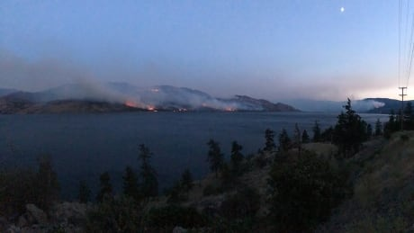 Growing B.C. wildfires trigger more evacuation alerts in Okanagan Valley