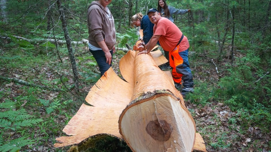 cbc.ca - Elizabeth McMillan - Mi'kmaq teens spend summer building birchbark canoe