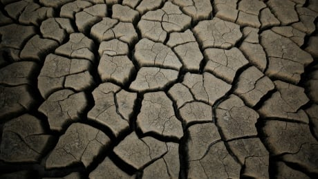 SAFRICA-DROUGHT/