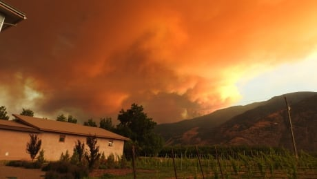 Peachland Summerland wildfire