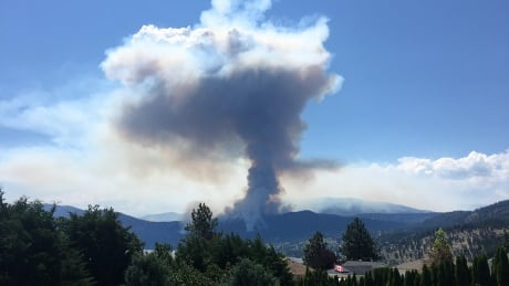 Mount Eneas Fire