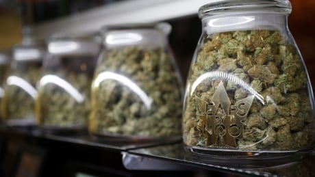 Jasper pitches relaxed rules for cannabis retailers