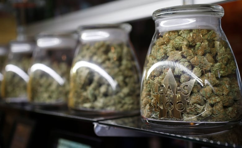 Online sale of pot after legalization raises privacy concerns, experts say marijuana small towns