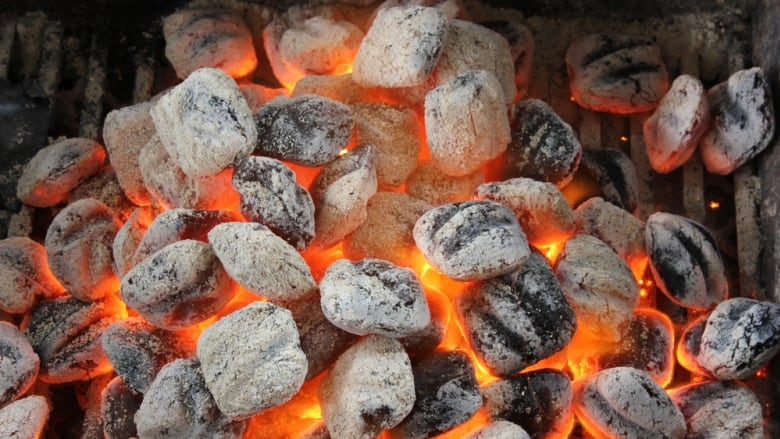 Charcoal Barbecues Banned In Popular Vancouver Parks Due To High Fire Danger Cbc News
