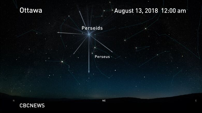 Perseid meteor shower promises spectacular show