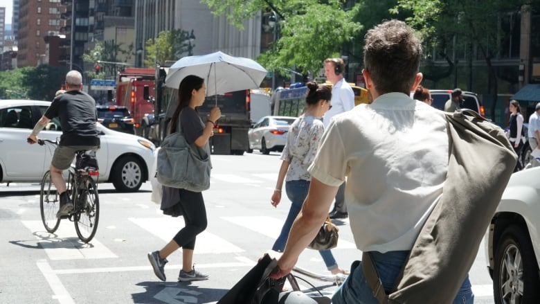 New York S Vision Zero Success Provides Road Map For Others Taking