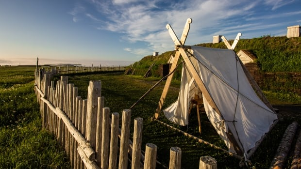 Ancient solar storm proves Vikings lived in Newfoundland by at least AD 1021, scientists say