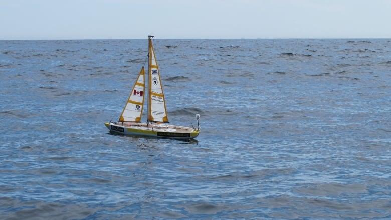 Mini Autonomous Sailboat Embarks On Lonely Race Across The Atlantic