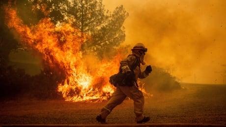 California Wildfires Record