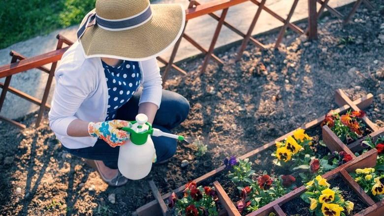 How to turn your tired, parched lawn into a thriving garden