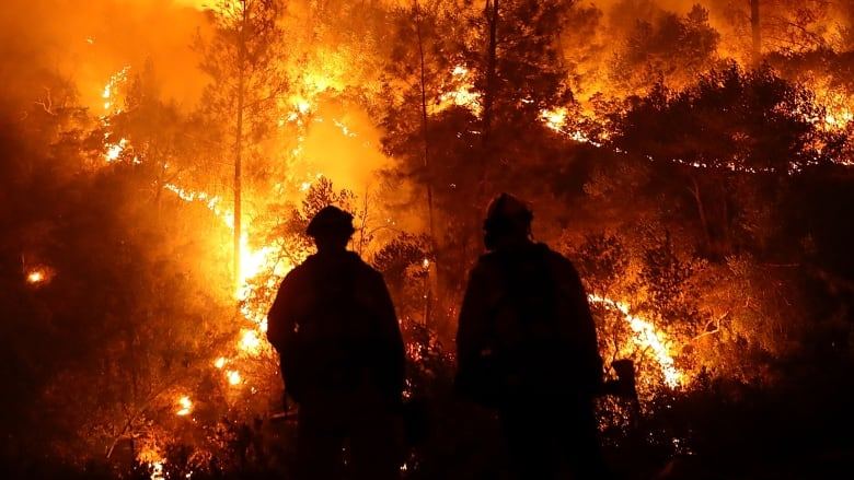 Man held over devastating Californian wildfire