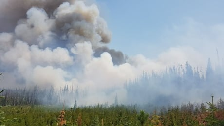 West Kelowna fire