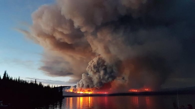 Forest fires can impact the water as well as the air | CBC News