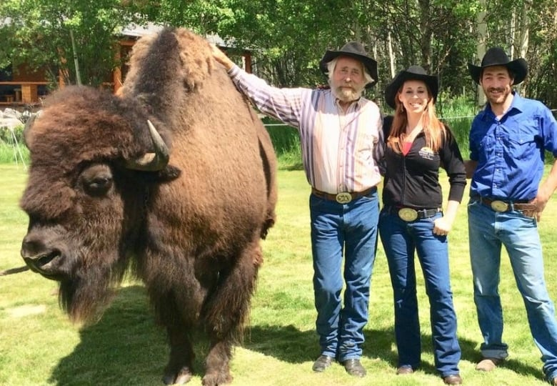 Buffalo guys