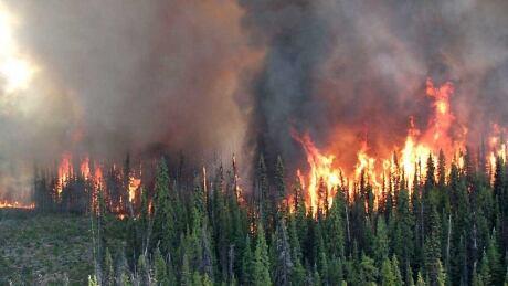 Shovel Lake wildfire