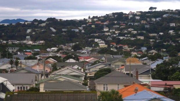 New Zealand economist says foreign buyer ban unlikely to curb housing prices