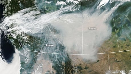 smoke from raging b c fires seen from space by nasa satellite