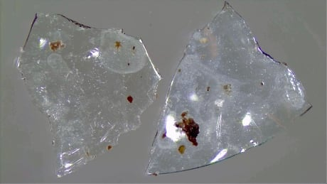 Contact lenses from sewage sludge
