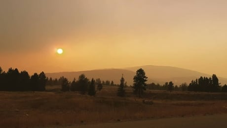 Kimberley, B.C., under evacuation alert as winds fuel nearby wildfires | CBC