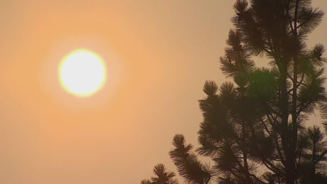 B.C. wildfires 2018: Smoke leaves majority of province under special weather statement