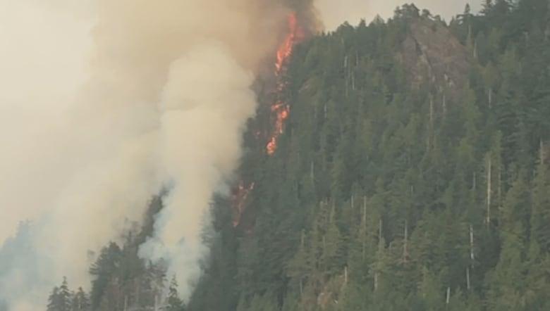 B C  Wildfires 2018: Flights cancelled as smoke chokes