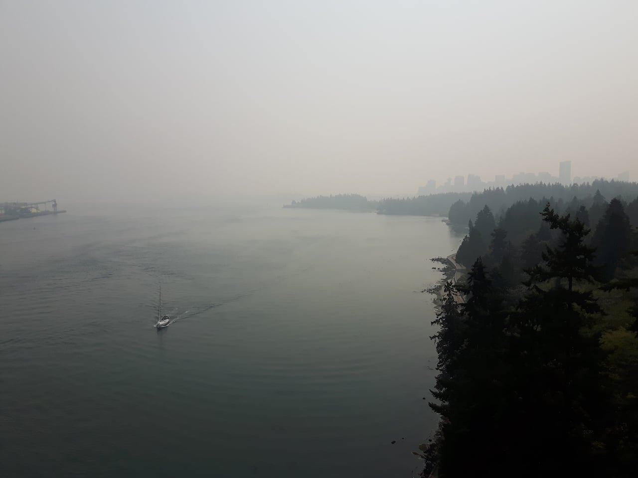 Air quality plummets in Metro Vancouver as wildfire smoke blankets