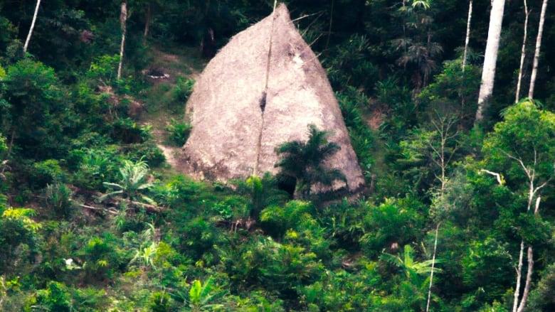 brazil-amazon-tribe.jpg