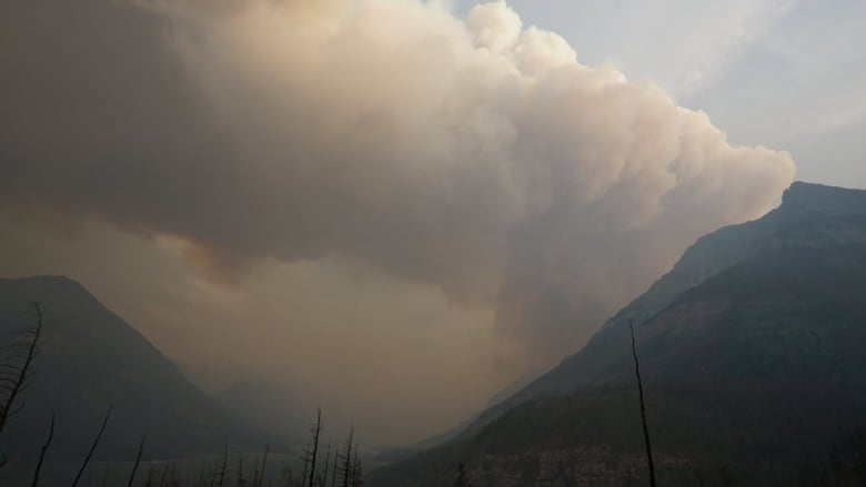 Fire evacuations lifted for Canada's Waterton Lakes park