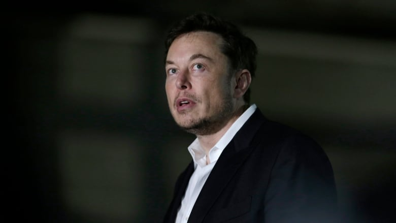 Elon Musk Says Tesla Will Not Go Private & Remain a Public Company