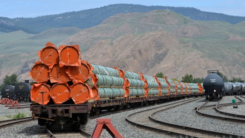 Federal cabinet to decide again on Trans Mountain pipeline expansion this week