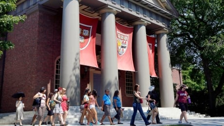 Havard Race In Admissions
