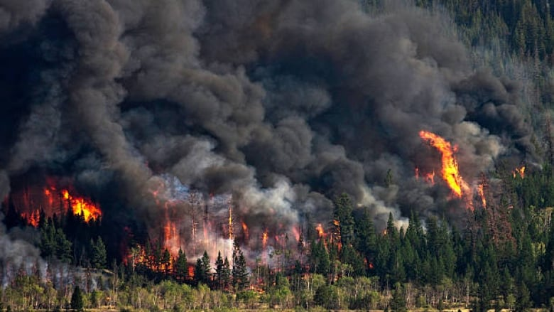 Sioux Lookout declares state of emergency as town hosts Keewaywin ...