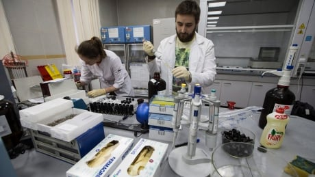 WADA panel recommends reinstatement of Russian anti-doping agency
