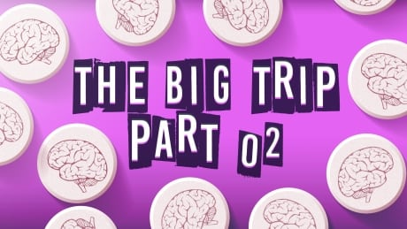 The Big Trip Part 2: How Psychedelics Affect the Brain