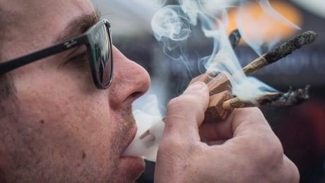 the hunt for online herb ottawa seeks dope on hazy world of pot s cryptomarket