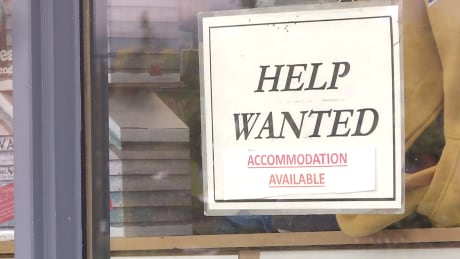 Housing crunch a concern as Banff seeks workers for ski season thumbnail